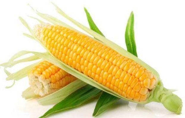 2019年4月25日全国各地玉米价格最新行情一览