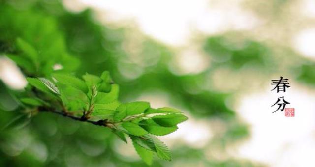 春分是什么意思?春分节气有什么习俗与讲究你知道吗